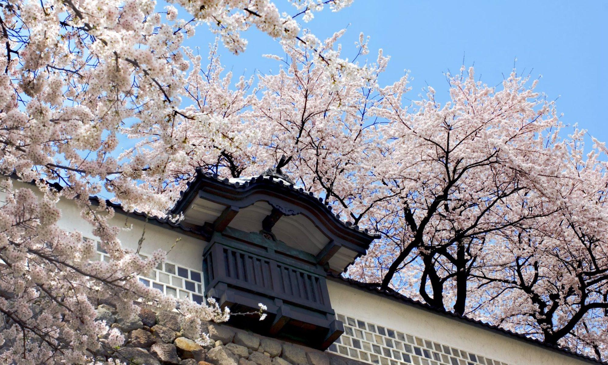 第49回中部地区英語教育学会石川大会